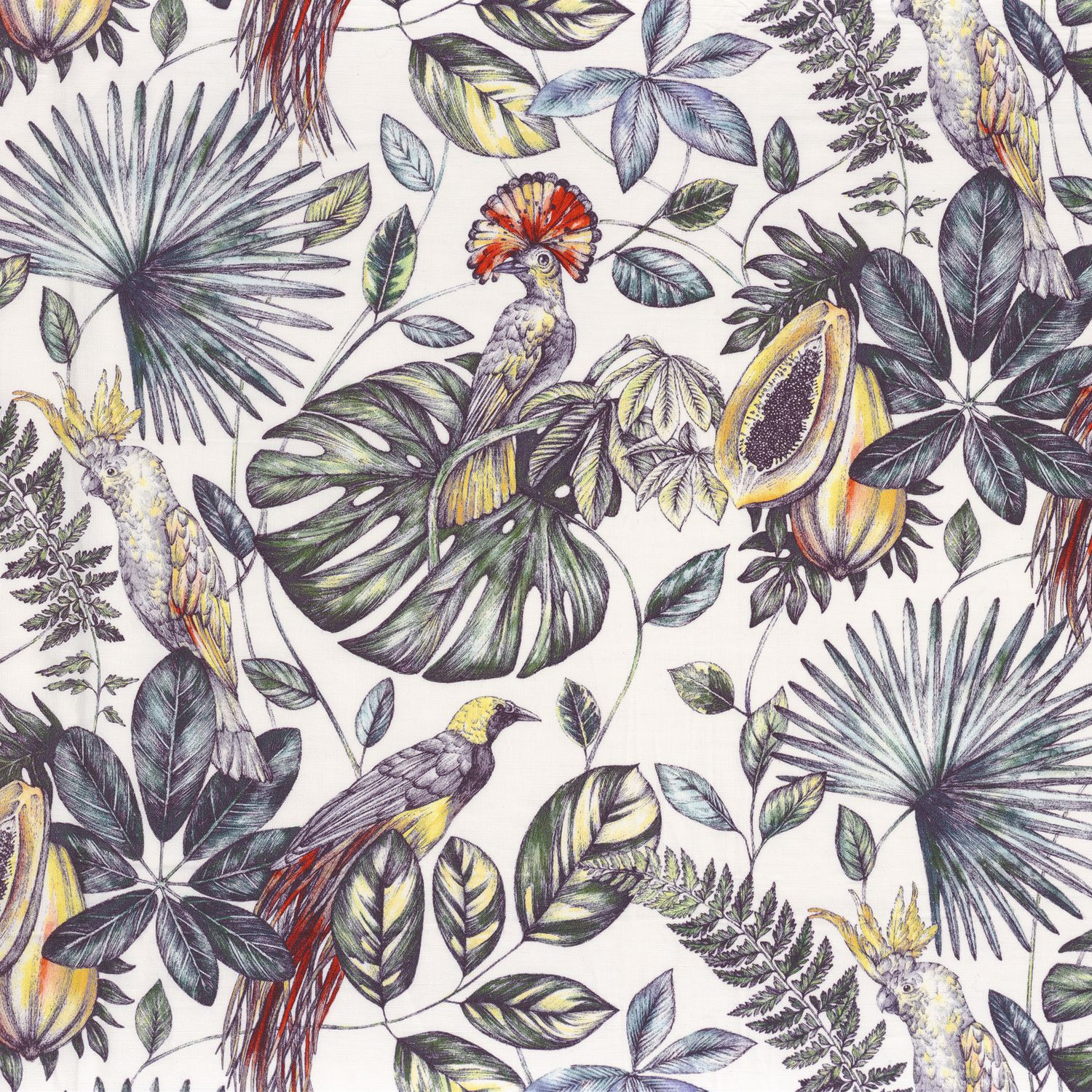 44750144 Collection - Into The Wild Fabric