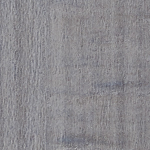 GT853 Collection - Floor Tile 2019-21